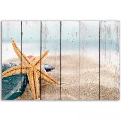 картина морская звезда