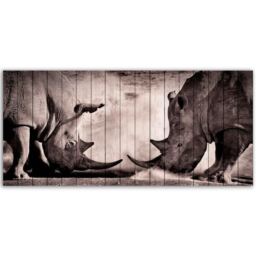 носороги картина