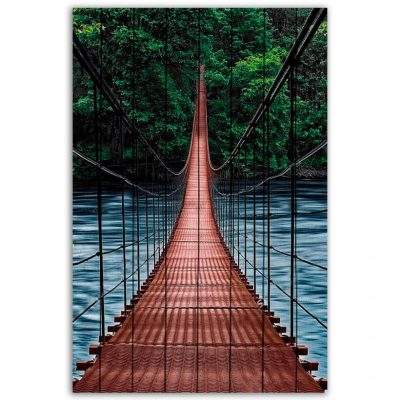 картина мост в джунгли