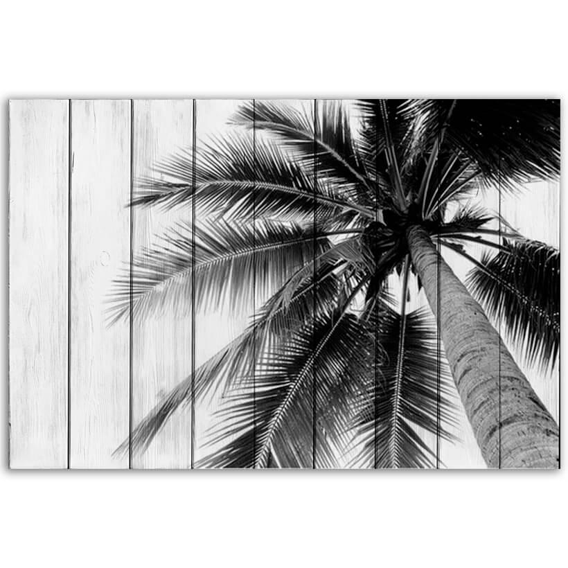 картина пальма
