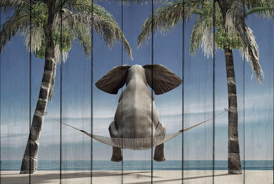 картина слон на отдыхе