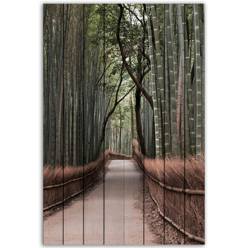 картина Бамбуковый лес