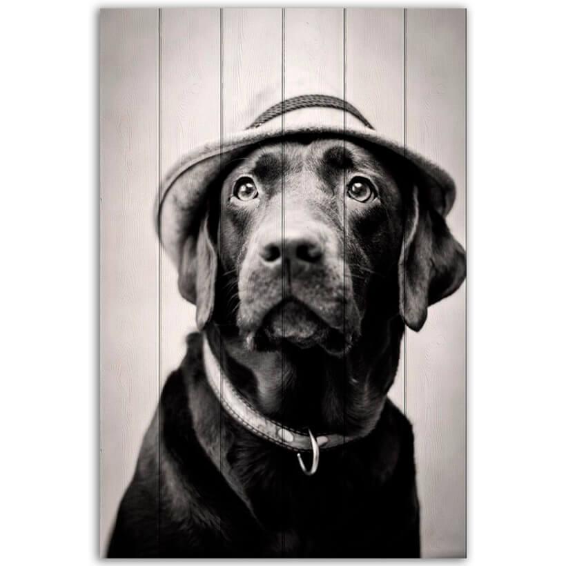 картина собака