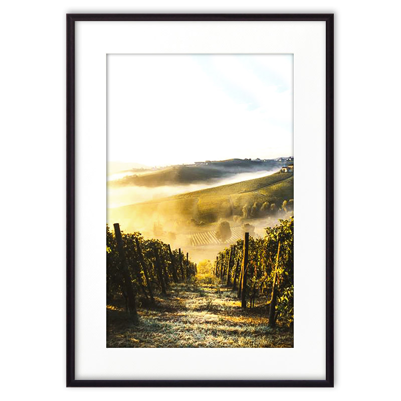 poster-1071-kollage-green-provence
