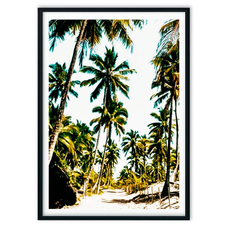 poster_jungle-6-4