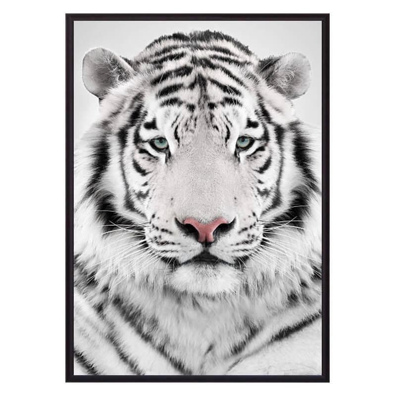 Белый_тигр
