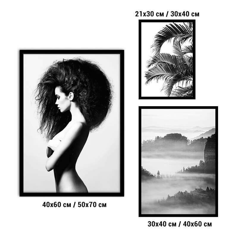 kollag-3-fashion-plant-24