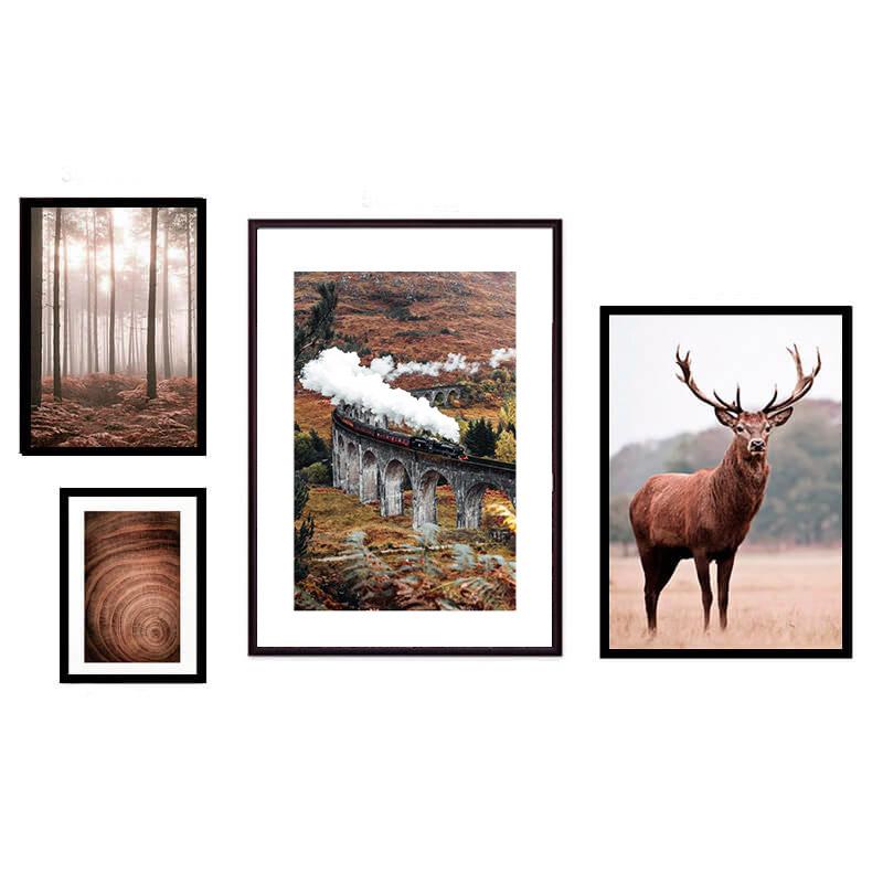 kollag-4-priroda-animal-17