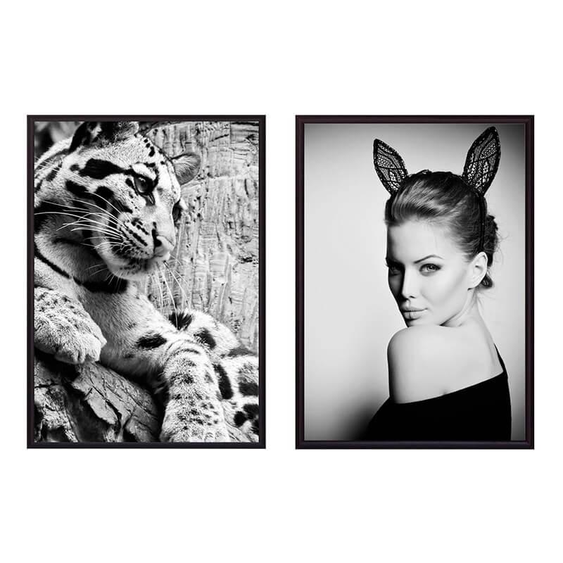 kollag-fashion-animal-39