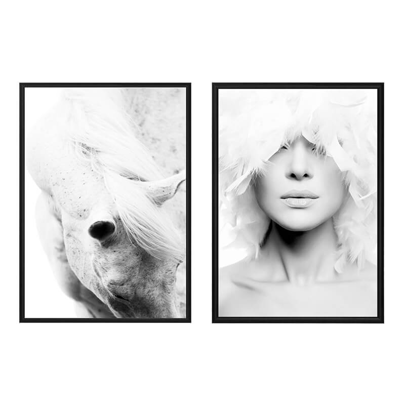 kollag-fashion-animal-44