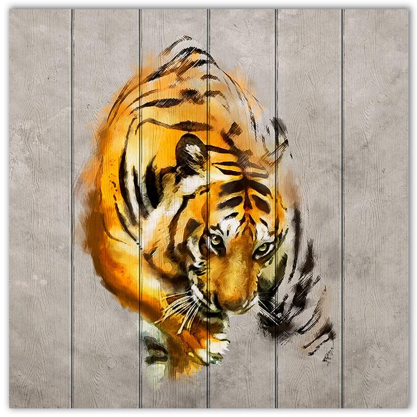kartina-tigr